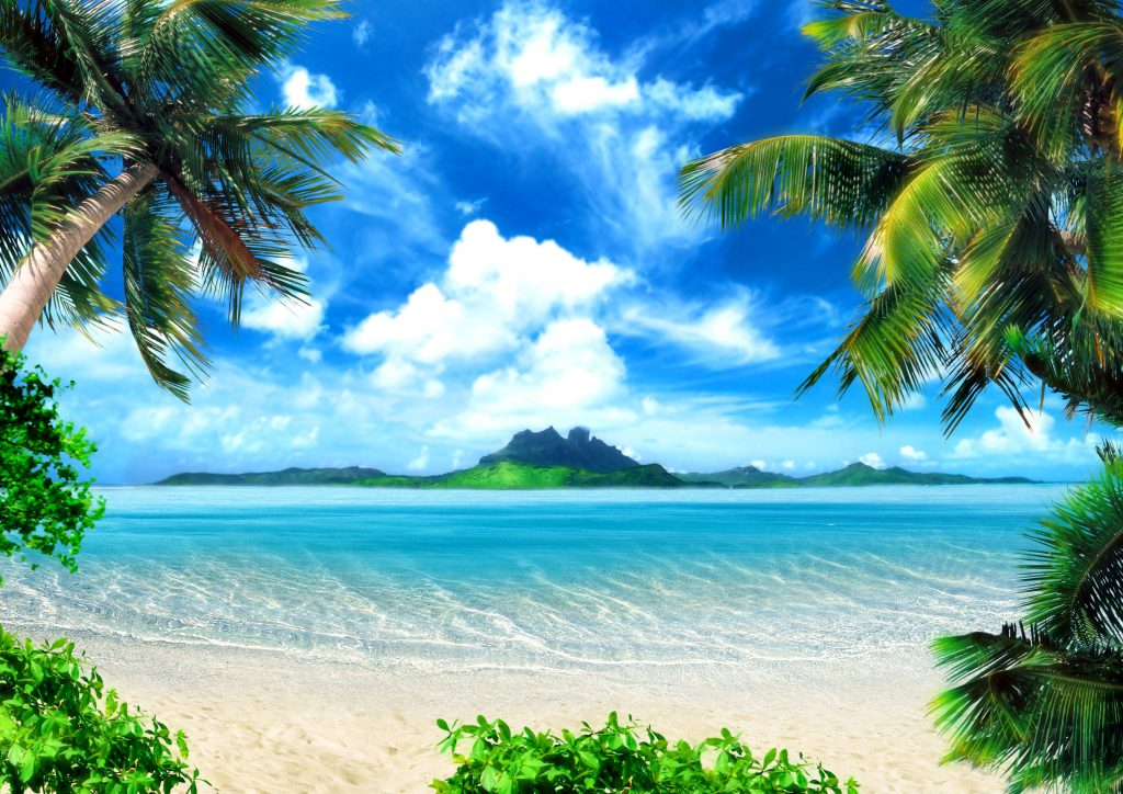 26483472 - tropical coast, beach with hang palm trees. view of the sea, the island green and the sky with large clouds. magical lighting.