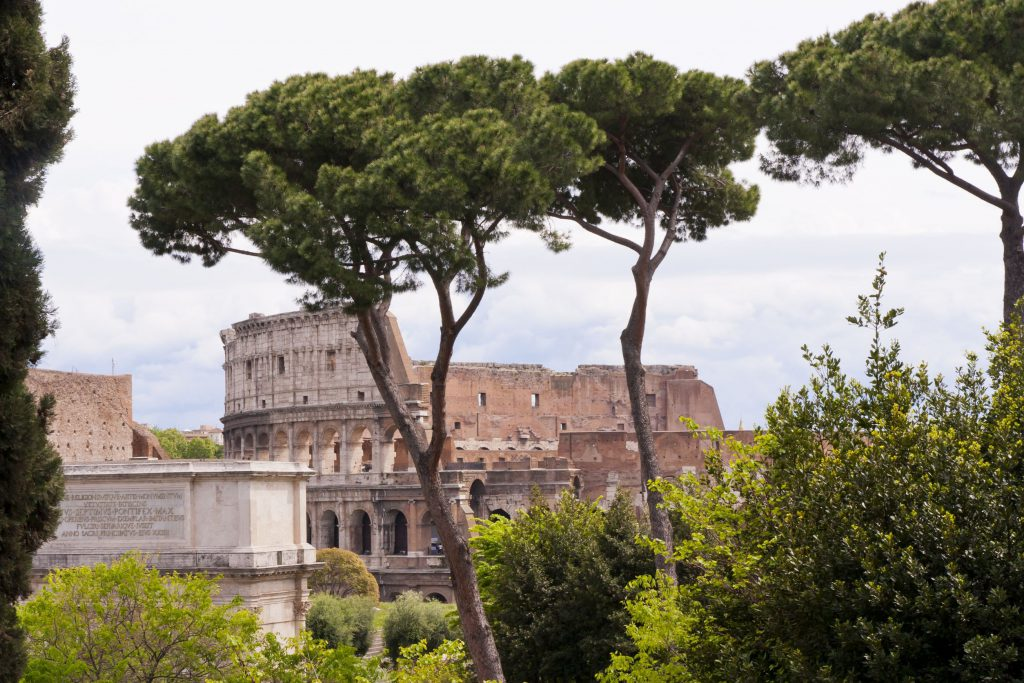 19019283 - view of the coliseum from palatine hill rome, italy